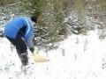 Кировчанин собрал пять ведер рыжиков под снегом