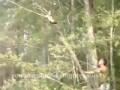 хахахаха решил снять кота с дерева....