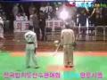 Hapkido Master.