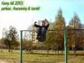Лучшие parkour падения 2010