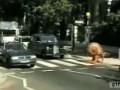 улитка через дорогу