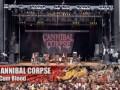 Cannibal Corpse - I Cum Blood - Live @ WFF 2007