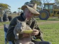 Feeding a farting wombat - Natural World 2016: Episode 5 Preview - BBC Two