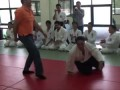 Turkish Submission Wrestling vs Aikido