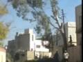 Негры пилят дерево