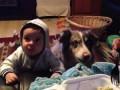 """Прикол! Собака говорит """"МАМА"""" быстрее ребёнка. Тренировка собаки и детей ;)"""