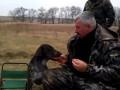 Настоящая охотничья собака.flv