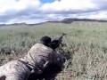 Стрельбы - осторожно, звук!
