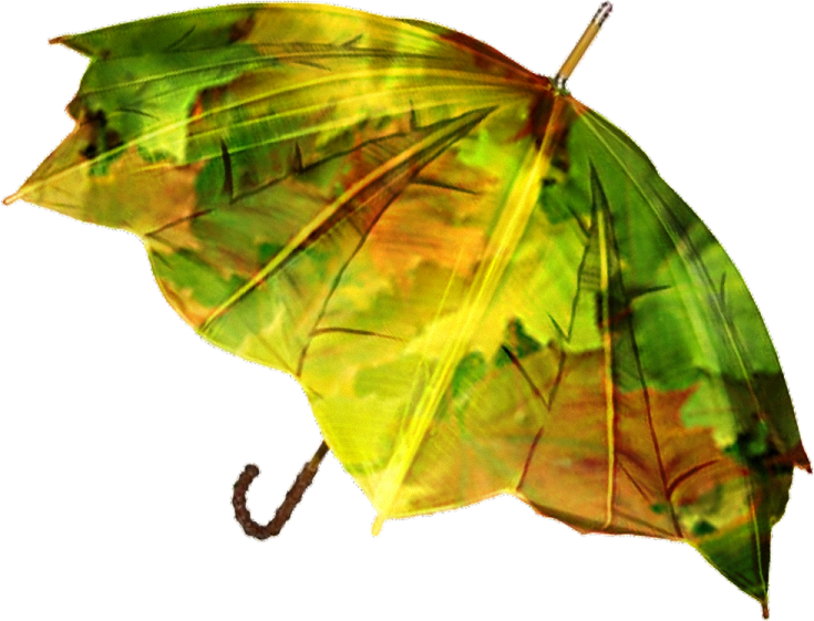 Открытка зонт из осенних листьев на зеленой траве, архивом мультяшные