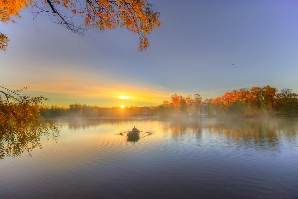 эдуард гордеев фото осень в царском селе светодиодные