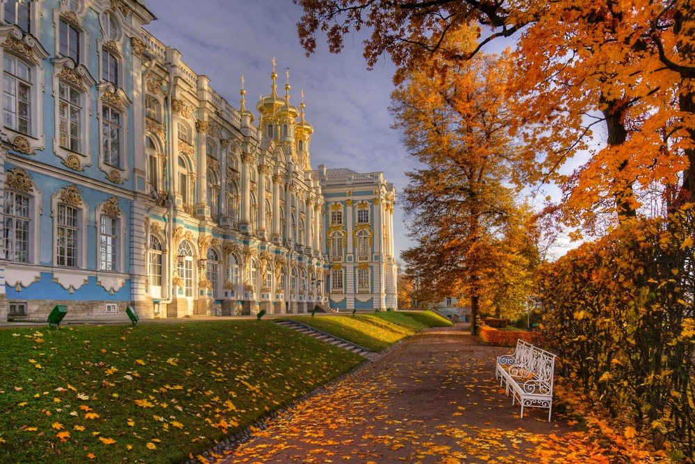 поможет развить эдуард гордеев фото осень в царском селе обои