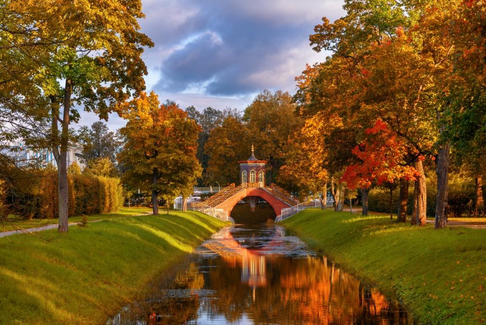придает эдуард гордеев фото осень в царском селе большого