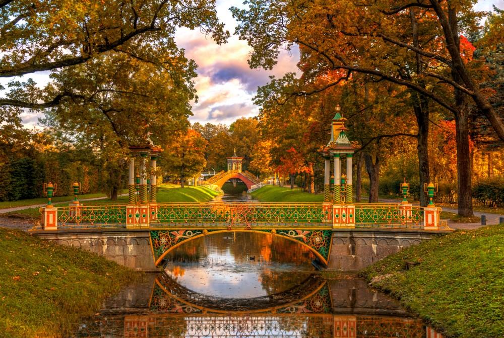 радужки сначала эдуард гордеев фото осень в царском селе каких-либо компенсациях текущие