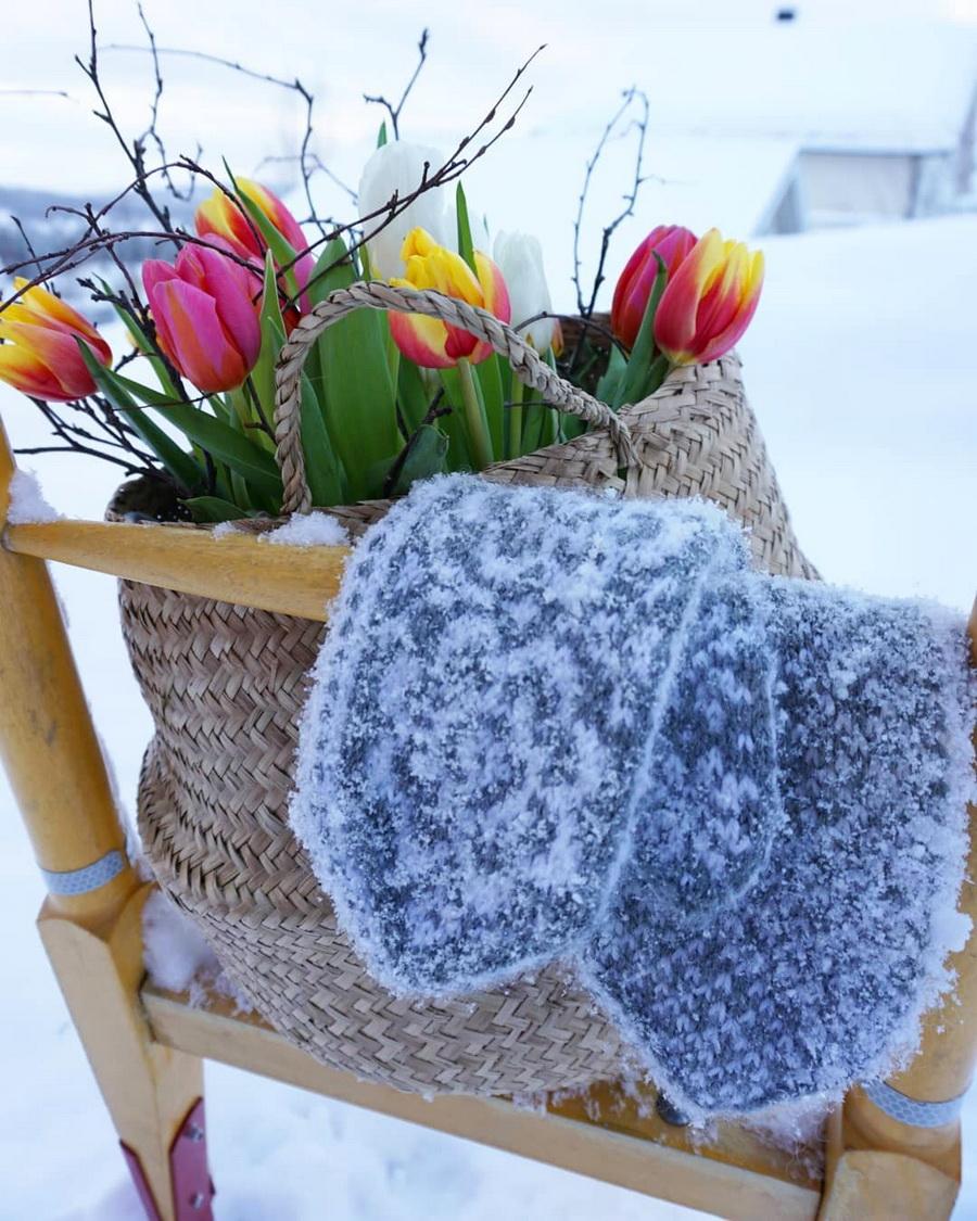 Тюльпаны в феврале