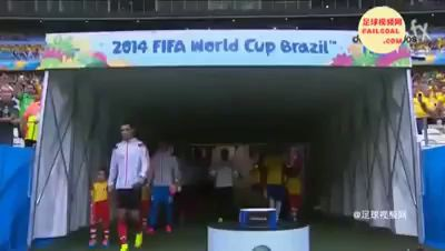 World Cup 2014 best moments funny montage by failgoal.com