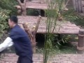 Baby Panda Wants To Play With Tired Zoo Keeper | Funny Video