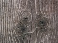 wood texture textures wood background 1600x1200 wallpaper.  Category.  Other Art Design.