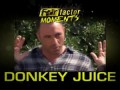 Fear Factor Moments | Donkey Juice